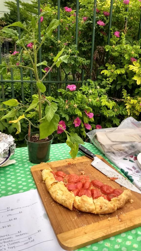 tomato tart with tomato plant